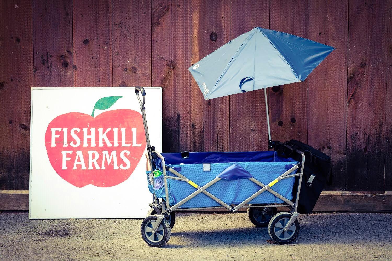 DIY Kid Utility Wagon with Umbrella