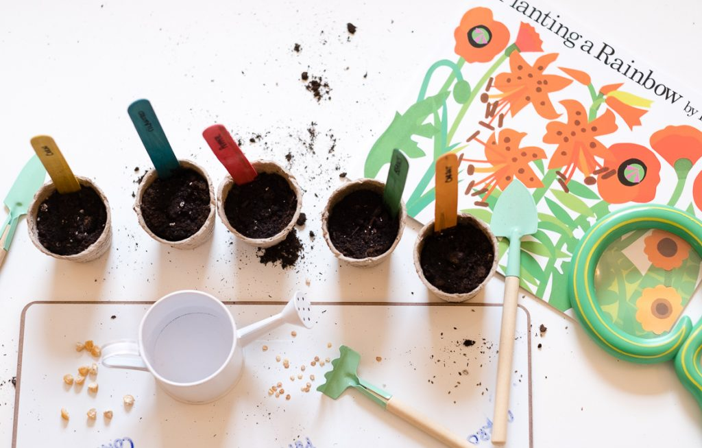 Indoor Gardening Activities For Kids