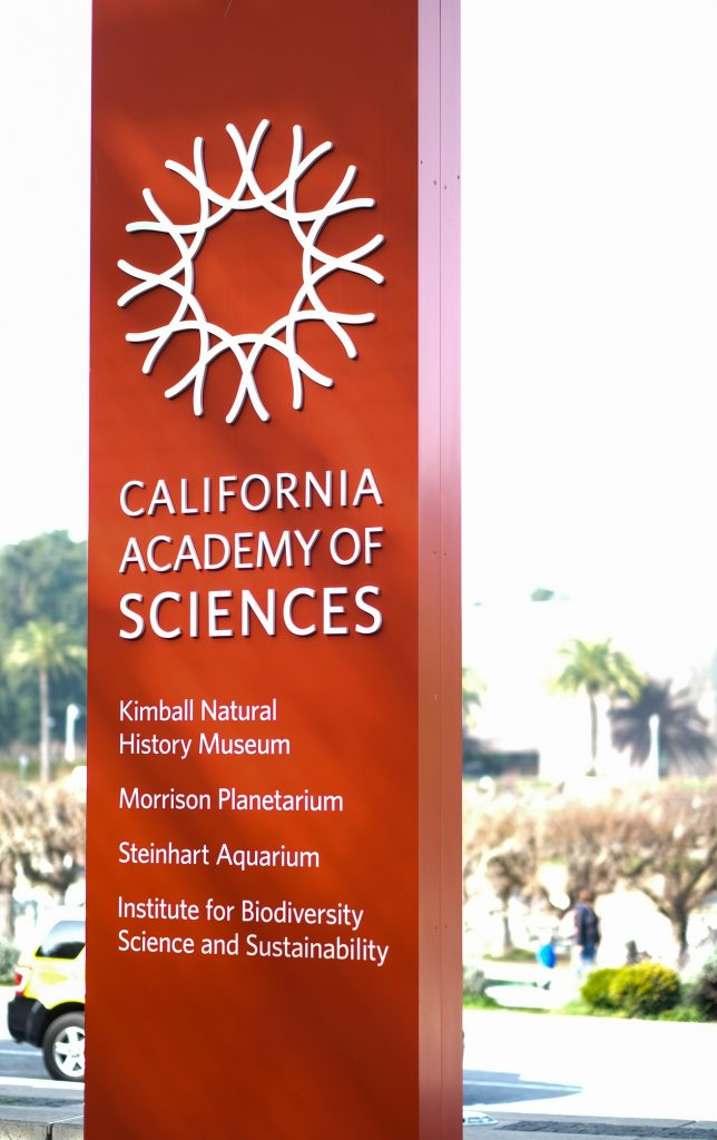 San Francisco Travel With Kids - CA Academy of Sciences