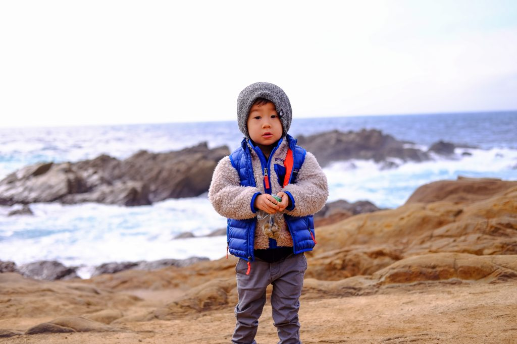 Monterey Bay Peninsula Attractions For Kids 10