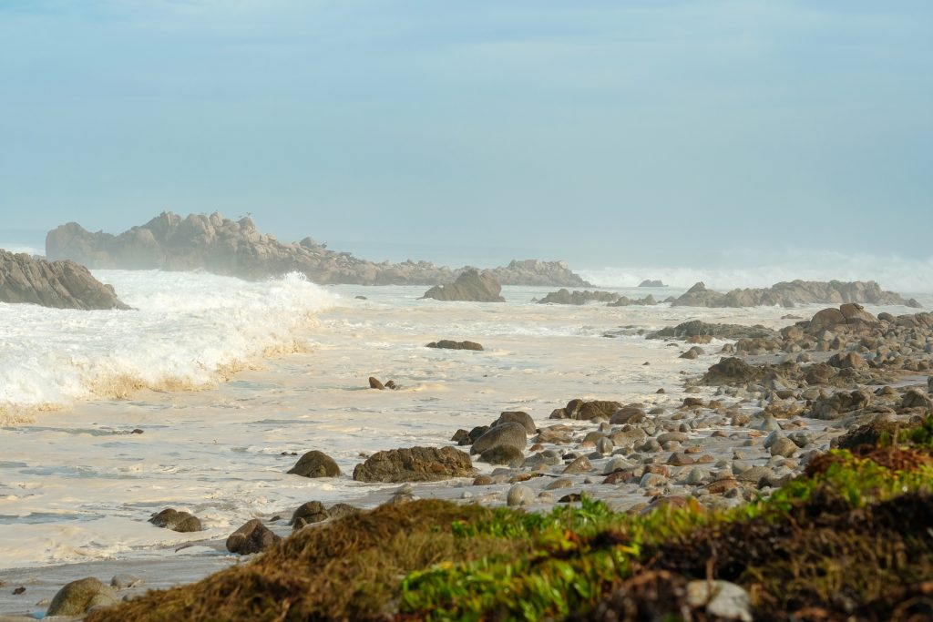 Monterey Bay Peninsula Attractions For Kids 14