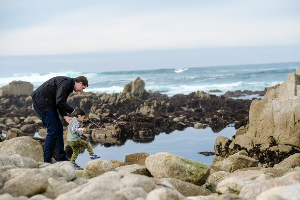 Monterey Bay Peninsula Attractions For Kids 5