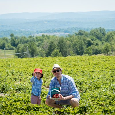 A Day in the Hudson River Valley