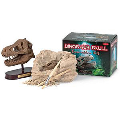 Geocentral Excavation Dig Kit Dino Skull1