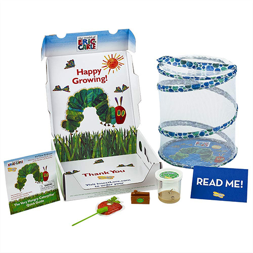 The Very Hungry Caterpillar Butterfly Growing Kit With Live Caterpillars 1