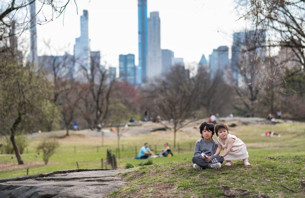 Central Park picnic spots