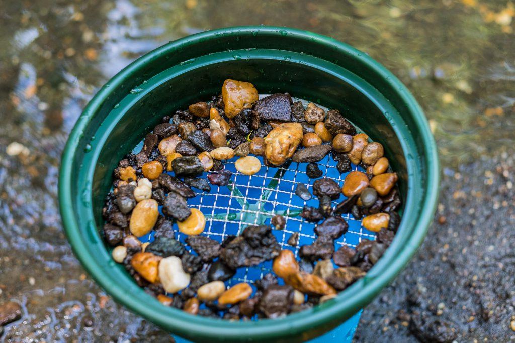 Fossil Hunting Big Brook Preserve Nj Web 2