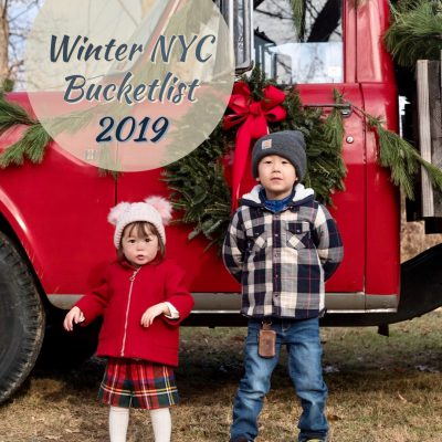 2019 Our Family's Winter in NYC Bucketlist