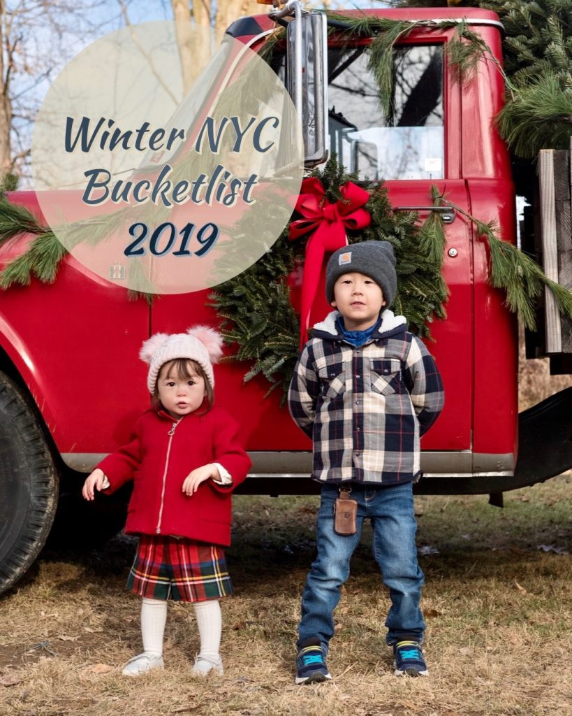 Winter Nyc Bucketlist 2019
